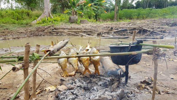 กินข้าวกินปลาหรือยัง วลีสั้นๆ ที่ใครหลายคนได้ยินจากคนไทยในผู้สูงวัย